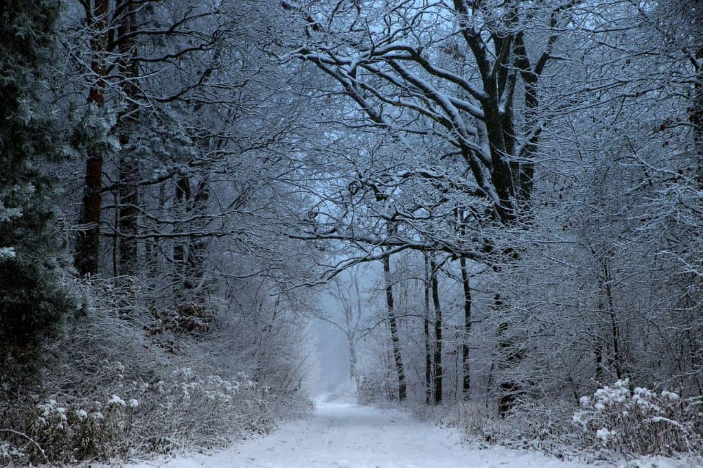 mati, winter, snow